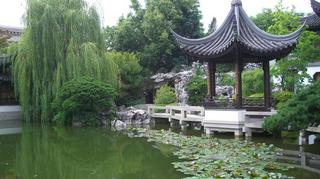 chinesegarden.JPG